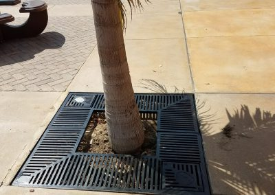 Tree Grate- Xtreme Iron Work