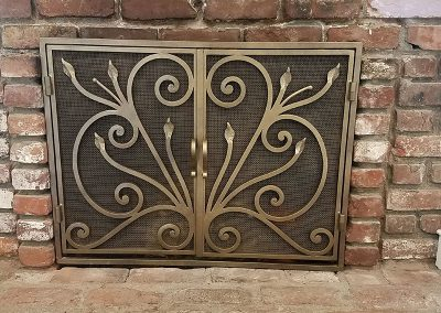 Fireplace Door- Xtreme Iron Door